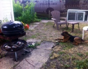 I celebrated friendship day with Max, my broken bbq and a new friend too, lol.