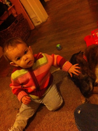 He half-heartly obliges me.. poor dog having to be petted by a baby!